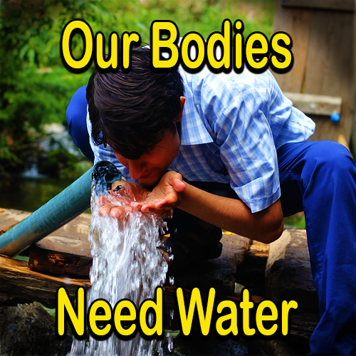 Our Bodies Need Water