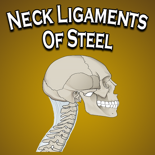 Neck Ligaments Of Steel