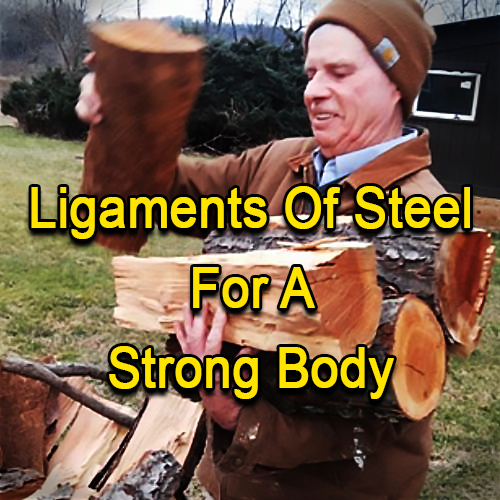 Ligaments Of Steel For A Strong Body