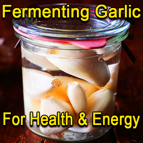 Fermenting Garlic for Health and Energy