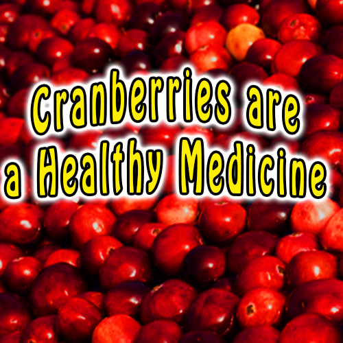 Cranberries are a Healthy Medicine