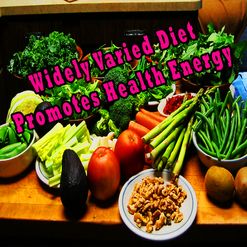 Widely Varied Diet Promotes Health Energy