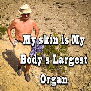 My Skin is My Body's Largest Organ