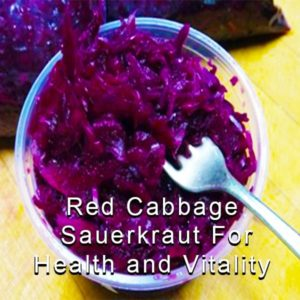 Red Cabbage Sauerkraut For Health and Vitality