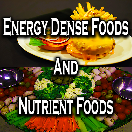 Energy Dense Foods And Nutrient Foods