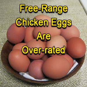 Free-Range Chicken Eggs Are Over-rated
