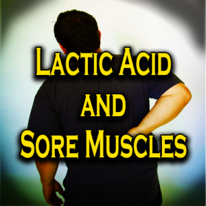 Lactic Acid And Sore Muscles