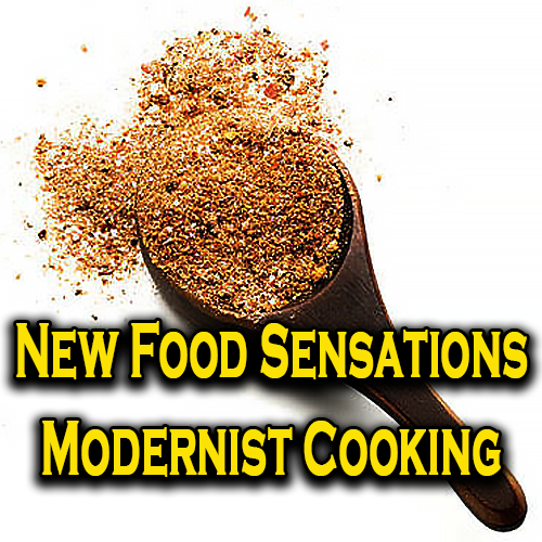 New Food Sensations Modernist Cooking
