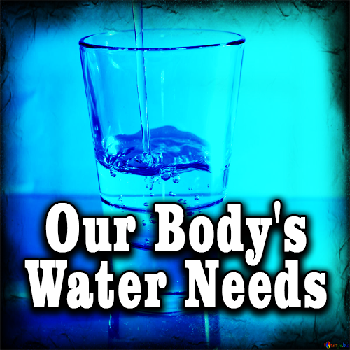 Our Body's Water Needs