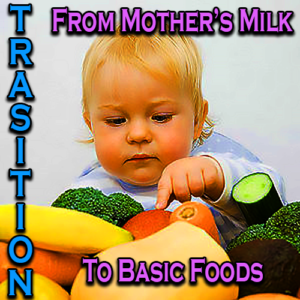 Transition From Mother's Milk To Basic Foods